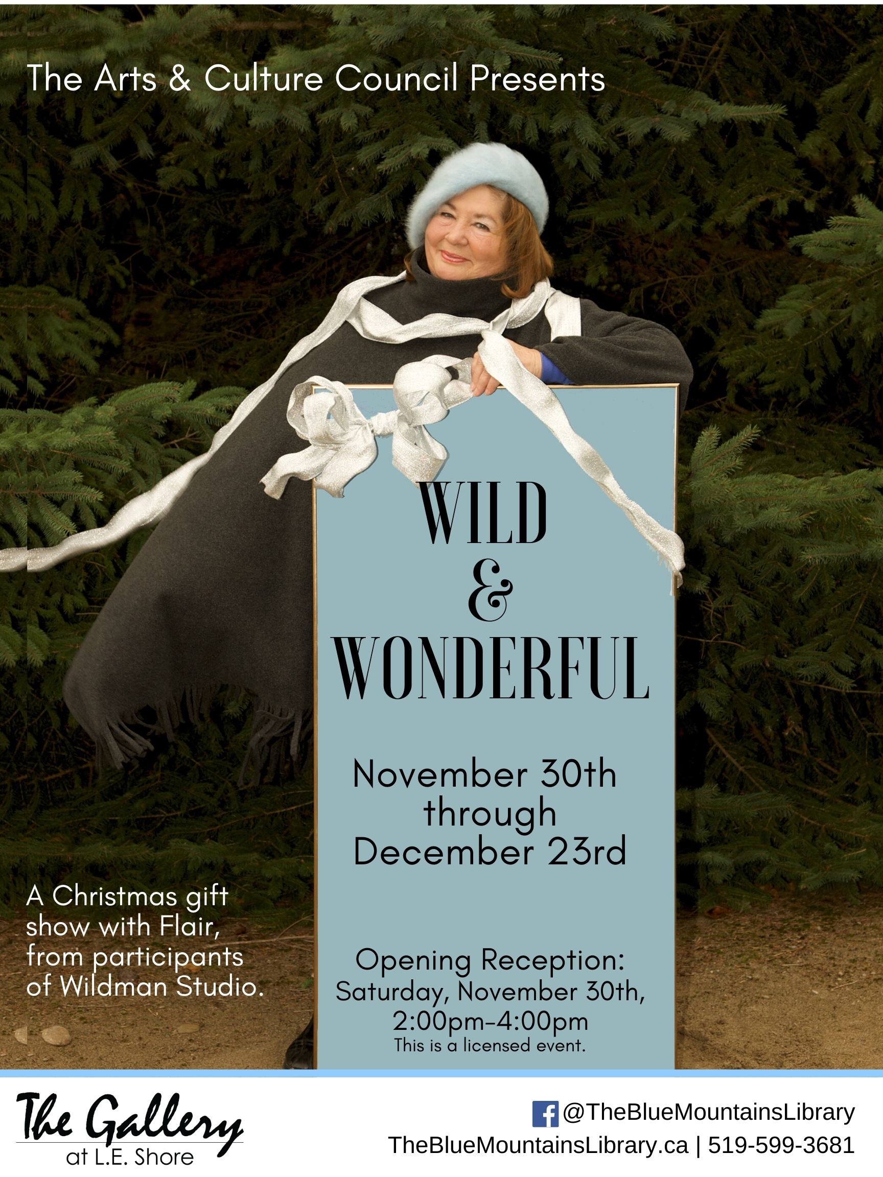 Wild & Wonderful - A Christmas Gift Show with Flair
