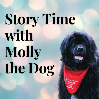 Story Time with Molly the Dog